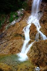 Wildbach an der Quelle