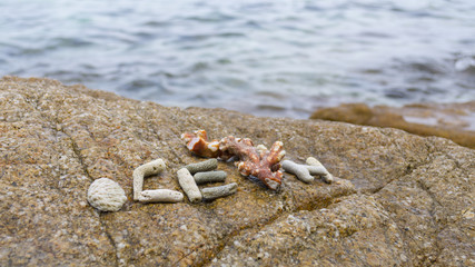 Arrangement of coral with word ocean on beach rock.