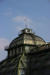 Vienna Greenhouse in shonbrunn park close_up