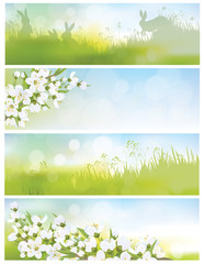 Vector spring banners, blossoming tree branch, nature background