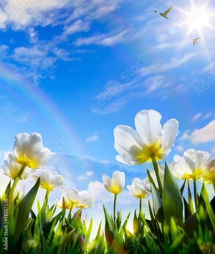 art Spring flower on Easter Day - 78387508