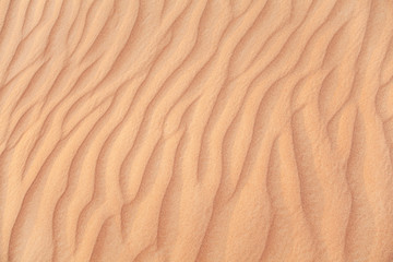 Rippled sand in desert.