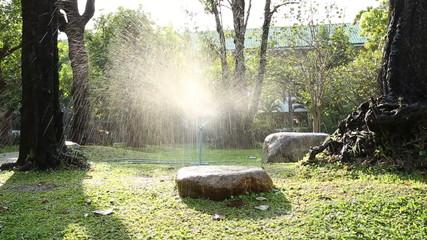 Dolly shot of garden irrigation sprinkler