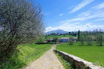 sentier du pays basque et montagne de la Rhune