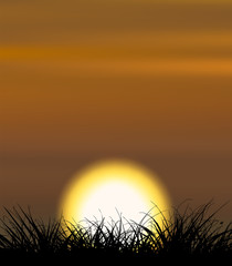 Background illustrating sunset with the grass shape