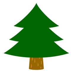 杉の木・もみの木