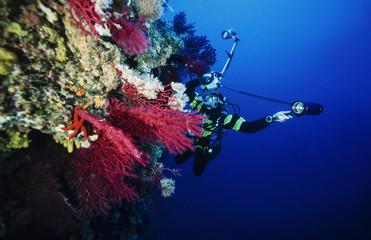 Mediterranean Sea, underwater photographer - FILM SCAN