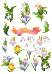 watercolor flowers set