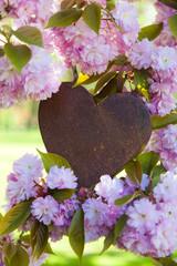 Herz im Frühling