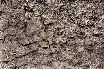 close up of dry soil in hdr