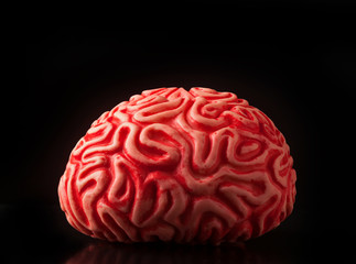 Human rubber brain