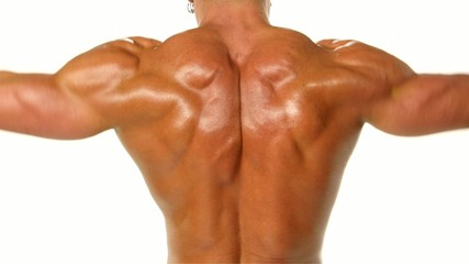 Young bodybuilder athlete trains muscles closeup on white