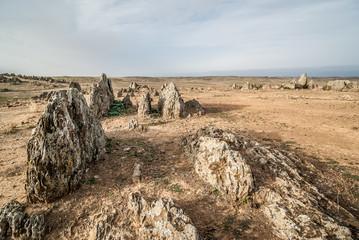 desert landscape with rock formations of sharp rocks