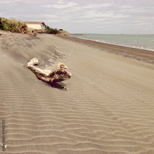 canvas print picture Coastline