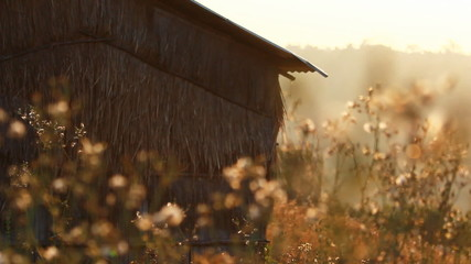 Vintage old hut with grass field on the mountain in the morning
