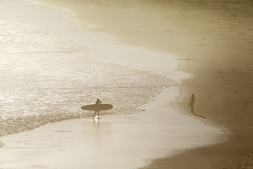 Surfer carrying surf board, wading in from sea