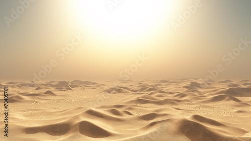 Leinwandbild Motiv 砂漠