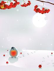 Bullfinch and berries in winter