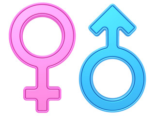 Male and female gender symbols of blue and pink colors on white