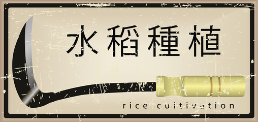 Card on the cultivation of rice