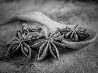 black and white  star anise
