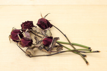 sear red rose on plywood background