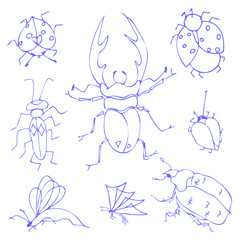 Insects sketch decorative icons set with dragonfly fly butterfly
