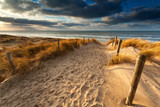 sand path to North sea beach - 78419798