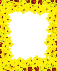 frame of flowers