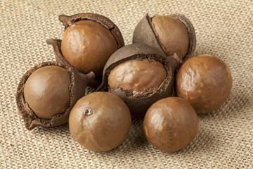 Broken macadamia  nuts