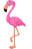 Cartoon flamingo bird