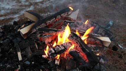 Burning wood, outdoor winter campfire macro video
