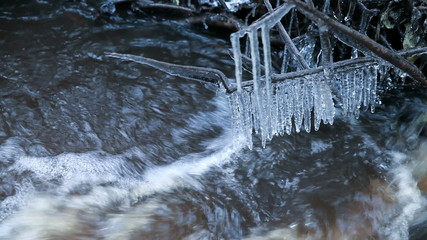 Fast water run in the spring stream, icicles are hanging on bran