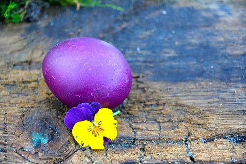 canvas print picture lila Hühnerei auf Holzuntergrund