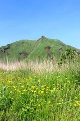 春のおかまど山
