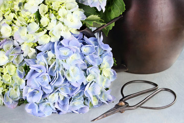 Cut Hydrangea and Gardening Supplies