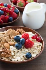 oatmeal and muesli in a bowl, fresh berries and milk