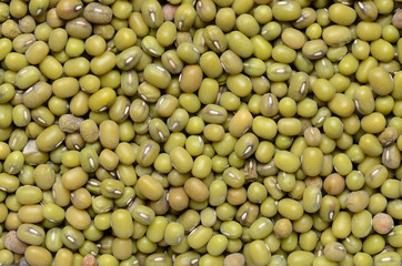close up mung beans background