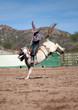 Bronco Riding - 78436993