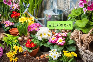 Willkommen im Garten!