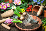 Fototapety Frühling, Blumen, Gartenarbeit