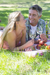 Couple drinking wine having a picnic