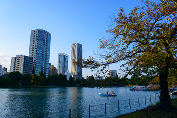 Shinobazu Pond of the Ueno Park in Tokyo, Japan
