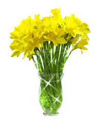 Daffodils in a glass vase with star burst effect