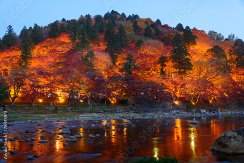Plexiglas Canyon Autumn foliage in Korankei, Aichi, Japan