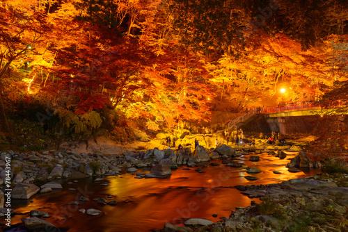 Leinwanddruck Bild Autumn foliage in Korankei, Aichi, Japan