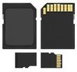 SD and microSD - 78450522