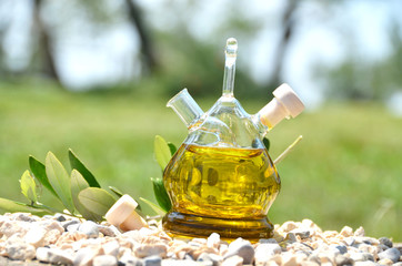 Bottle of olive oil in the olive grove. Sirmione, Italy