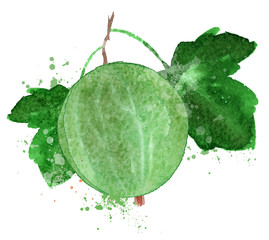 gooseberry vector logo design template. Berry or food icon.