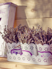 Bunches of lavender in flower pots